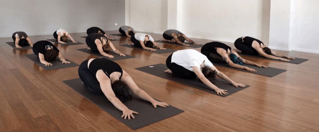 Jivamukti Yoga Newtown