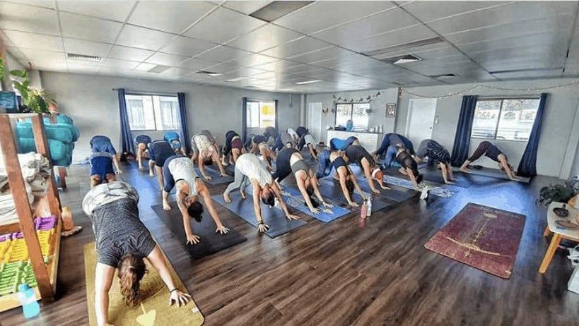 Wild Heart Yoga Tribe